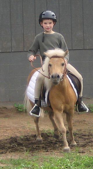 Aidan_pony5